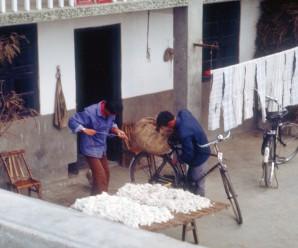 1983: Chinas Volkskommunen und die Privatwirtschaft