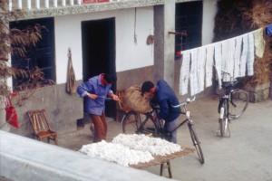 Volkskommune Ma Qiao: Baumwollverarbeitung. Foto: Ulrich Horb